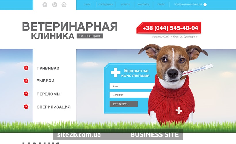 Главный экран для сайта ветеринарной клиники