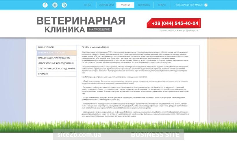 Внутренняя страница сайта для клиники